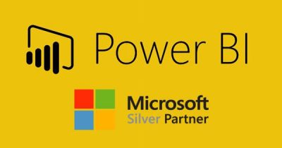 power bi partner